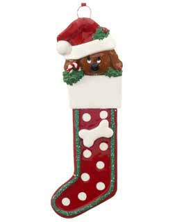 Doggie Stocking