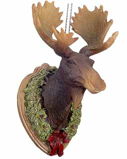 Moose Trophy Mount
