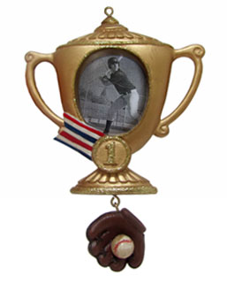 Baseball Trophy Frame