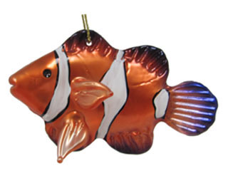 Tropical Fish - Clownfish