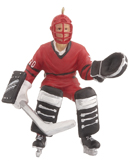 Goalie Hockey Player
