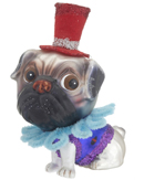 Pug - Red Top Hat
